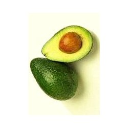 AGUACATE HASS ECO KG