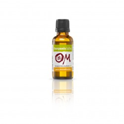 SINERGIA AROMADIFUSION OM 30ML TERPENIC